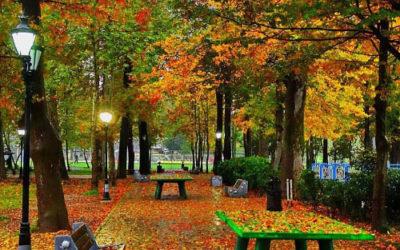 باغ محتشم ـ پارک شهر رشت