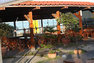 رستوران ساحلی - هتل دلفین بندر انزلی