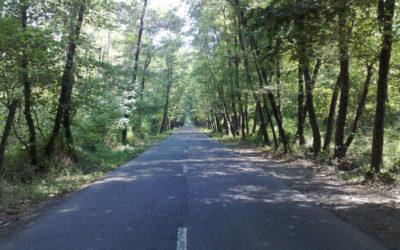 پارک جنگلی صفرا بسته – راهنمای گردشگری استان گیلان